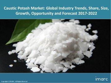 Global Caustic Potash Market Share, Size and Forecast 2017-2022