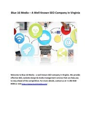 Blue 16 Media – A Well Known SEO Company in Virginia