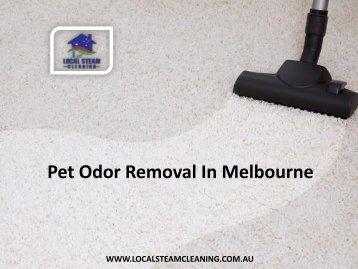 Pet Odor Removal In Melbourne