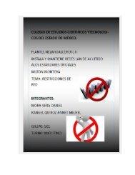 Restricciones de red Michel