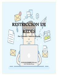 Restriccion de redes
