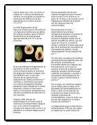 ALIMENTOS TRASGENICOS - Page 4