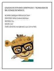 COLEGIO DE ESTUDIOS CIENTIFICOS Y  TECNOLOGICOS DEL ESTADO DE MEXICO