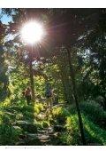 Bayerischer Wald - Gastgeber 2018 - Page 7