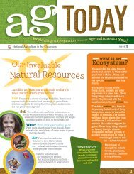 Ag Today: Issue 3