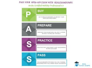 HP HPE6-A29 Exam Study Best Guide - HPE6-A29 Exam Questions RealExamDumps