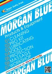 Morgan Blue Catalogue