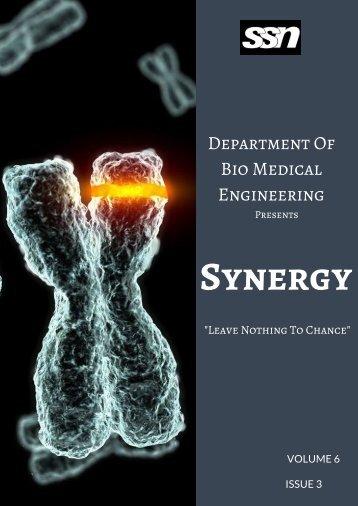 Synergy_JAS_2017