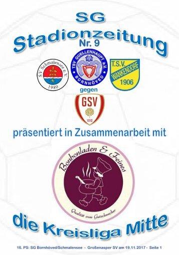 TSV  Stadionzeitung 9-2017-191117