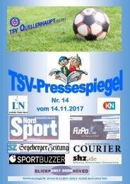 TSV-Pressespiegel-14-171117