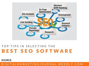 Choosing The Right SEO Software