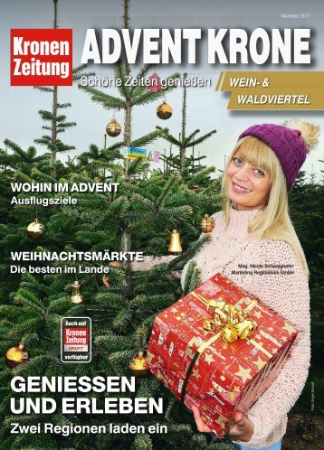 Advent Krone 2017-11-16