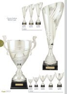 TCD 2017 Cups Catalogue - Page 2