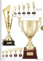 TCD 2017 Cups Catalogue - Page 3