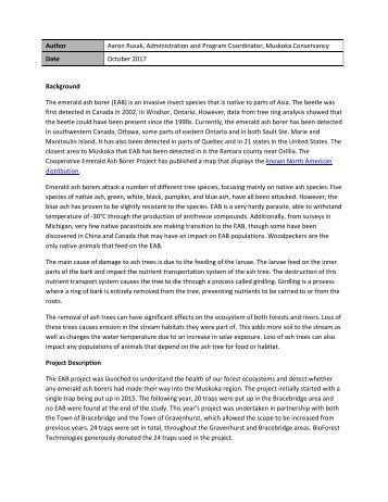 EAB Report 2017