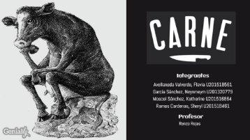 Agencia Carne - Publicidad