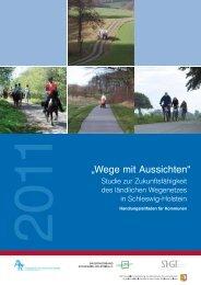 Handlungsleitfaden für Kommunen - Schleswig-Holsteinischer ...