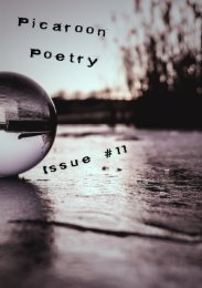 Picaroon - Issue #11 - November 2017
