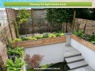 Choosing The Right Garden Seeds