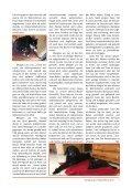 Samtpfote Herbst/Winter 2017 - Page 7