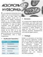 MICROORGANISMOS ASESINOS - Page 6