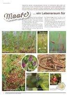 Naturschutzbrief November 2017 - Seite 6
