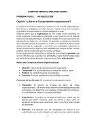 Comportamiento Organizacional - Page 6