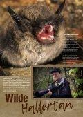 hallertau magazin 2017-2 - Page 6