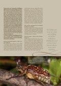 hallertau magazin 2017-2 - Page 7
