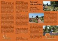 Unsere Tipps für einen schönen Rosengarten ... - Igel Gartenkultur