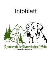 Infoblatt Hundeschule