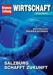 Wirtschaft in Salzburg_20017-10-29