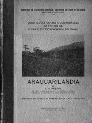 Araucarilandia - capítulo 03