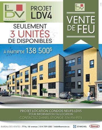 Projet LDV4