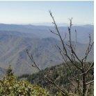 Hiking Smoky Mountains - Page 5