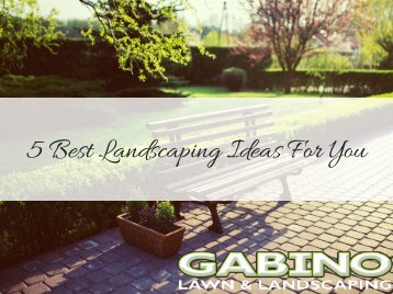 5 Best Landscaping Ideas For You