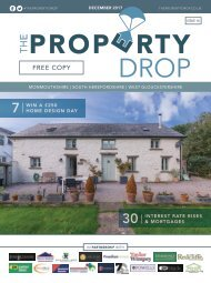 Property Drop Issue 16