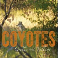 CoyoteBrochPages