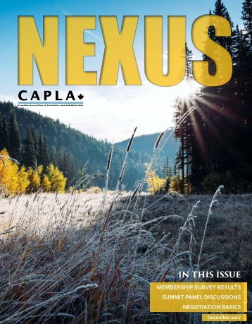 NEXUS December 2017 online version