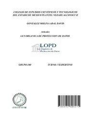 COLEGIO DE ESTUDIOS CIENTIFICOS Y TECNOLOGICOS DEL ESTADO DE MEXICO PLANTEL NEZAHUALCOYOLT II