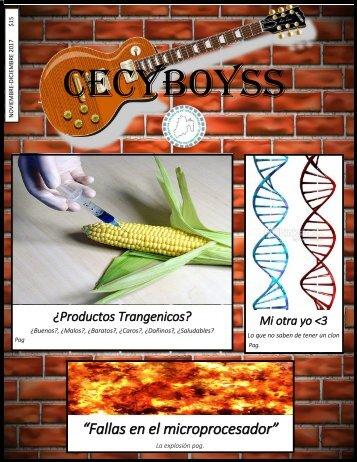 Revista CecyBoys