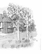 Brighton Wood - Page 5