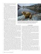 scientificamerican1117-42 - Page 5