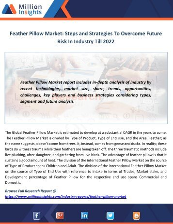Feather Pillow Market Steps and Strategies To Overcome Future Risk In Industry Till 2022