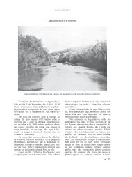 Araucarilândia - capítulo 06