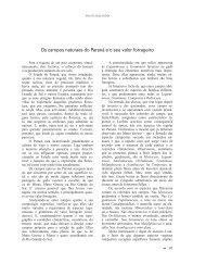 Araucarilândia - capítulo 07