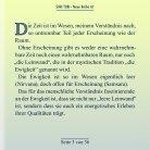 Doppelseiter Shri Tobi NR 07 - Page 3