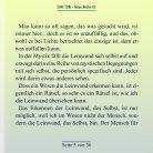 Doppelseiter Shri Tobi NR 07 - Seite 5