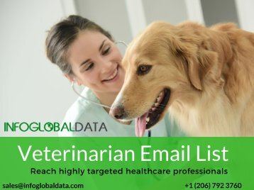 Veterinarian Email List