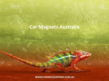 Car Magnets Australia - Chameleon Print Group